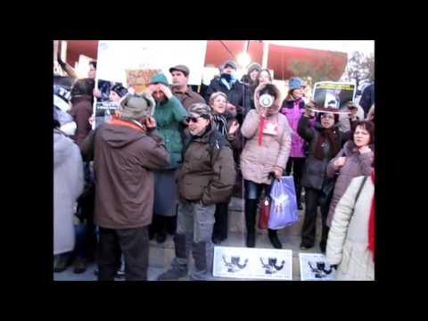 Protest of people who respect animals - 07.12.2013
