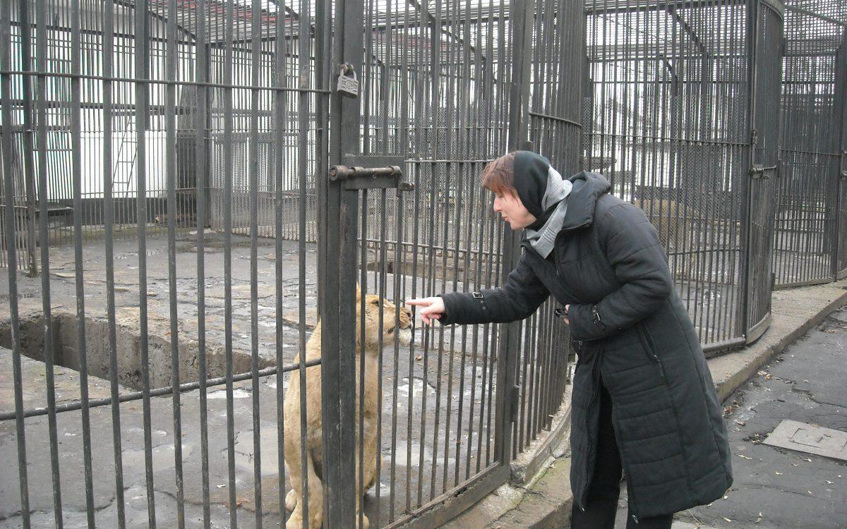 Parcul Zoologic de la Rădăuţi.